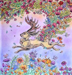 Kerby Rosanes - Mythomorphia Jackapole Coloured with Prismacolor