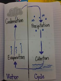 Water Cycle Foldable   Ever a Teacher: The Water Cycle