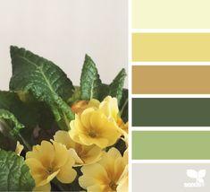 Farb- und Stilberatung mit www.farben-reich.com # flora hues