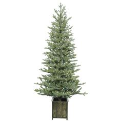 6' Potted Newfield Fir Artificial Christmas Tree with 300 Warm White LED Lights