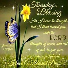 89 Best Thursday Blessings Images In 2019 Thankful Thursday