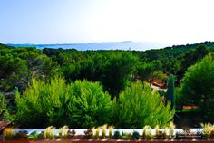 span class=text-galleryVilla Gust Enchanting Villa which plays on the use of colour nestled in the hills Ibiza/span 				    span class=btn-galleryemTreat yourself/ema class=reservation button href=/en/Information-request.html?property=Villa-GustBook now/a/span