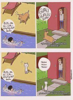 Prefiero los perros