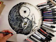 foto van Owls.