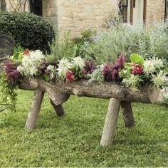 I always wanted a log planter with flowers. Log Planter, Garden Planters, Raised Planter, Planter Ideas, Planter Boxes, Dream Garden, Garden Art, Fall Flower Arrangements, Pot Jardin