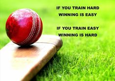 Cricket is life.Life is Cricket -Life is Like Cricket - Happyrealization Cricket Logo, Cricket Bat, Cricket Sport, Cricket Tips, Cricket Games, Best Inspirational Quotes, Motivational Quotes, True Quotes, Bowling Quotes