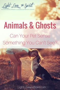Animals and ghosts. Pets and ghosts. Pets and spirits. Can your pet see things that you can't? Psychic Development, Spiritual Development, Can Dogs See Spirits, Can Dogs See Ghosts, Psychic Quotes, Can Your Pet, How To Start Meditating, Spirit Ghost, Strongest Animal