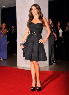 Can I just say that if i could be a celebrity in the us I would defiantly want to be Sofia Vergara shes gorgeous!