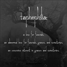 Taphophilia -a love / abnormal love and interest of funerals, graves, cemeteries Gothic Quotes, Dark Quotes, Gothic Words, Dark Words, Words Quotes, Sayings, Qoutes, Funny Quotes, Funny Memes