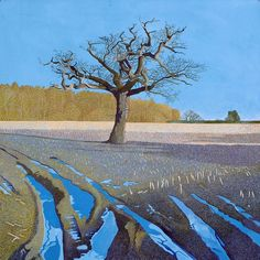 Crisp Morning In Somerset by Annie Ovenden