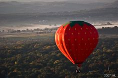 """""""Up, up, and away in my beautiful strawberry."""""""
