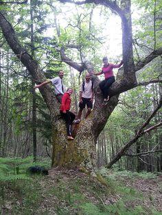 A great photo of the group on a hike a couple of days ago! Una bella foto di gruppo per un hike di qualche giorno fà!