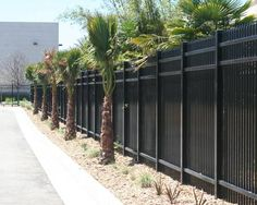 Landscaping around black iron fence. Around the pool maybe? Fence Ideas, Garden Ideas, Wrought Iron Fences, Fencing, Landscaping, New Homes, Home And Garden, Yard, Outdoor Structures