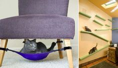 A space-saving cat hammock your feline will love! You can have a clutter free home and a satisfied cat! Cat Crib Hammock eliminates that clutter while Pet Hammock, Hammock Chair, Chair Bed, Hanging Hammock, Puppy Beds, Pet Beds, Pet Puppy, Pet Furniture, Furniture Design