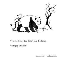 Big Panda, Bored Panda, Introvert Vs Extrovert, Relax Quotes, Relaxation Quotes, Dragon Quotes, Zen, Dragon Comic, Tiny Dragon