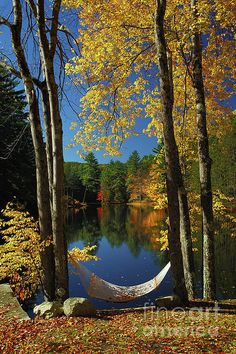 I just want to curl up and read right there Bliss - New England Fall Landscape Hammock Print By Jon Holiday