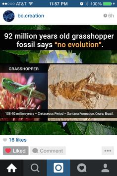 and no 92 million years! And some people dont want to believe what happened two thousand years ago. Creationism Vs Evolution, In The Beginning God, Archaeological Discoveries, Christian Dating, Intelligent Design, Atheism, Science And Nature, Archaeology, Bible