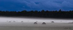 Estonian landscape by Aldo Tera