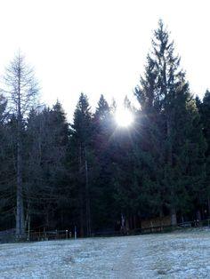 Neujahrsinspirationen Meine kleine Neujahrswanderung im Appenzellerland auf die Hohe Buche hat mich inspiriert und die Naturwesen haben mir viele gute Wünsche, Ideen und Anregungen