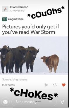So im guessing green, blue, and wite vs purple over here Victoria Aveyard Books, Red Queen Victoria Aveyard, Book Memes, Book Quotes, Good Books, I Love Books, Books To Read, Red Queen Quotes, Red Queen Book Series