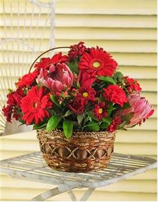 Birthday Gifts For Her: Protea and Gerberra basket