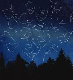 summer constellations...