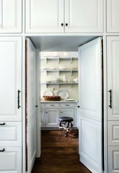 neat concept for a hidden entry into your pantry