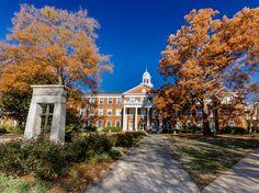 Cand aleg universitatea la care sa studieze, cei mai multi tineri trec cu vederea un aspect important: cum arata campusul si caminele in care vor locui.