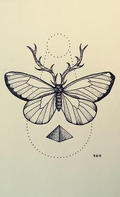 35+ Butterfly Drawing Ideas