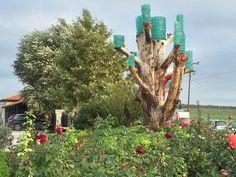 Wine Roads of Northern Greece: Ktima Gerovassiliou | spaswinefood