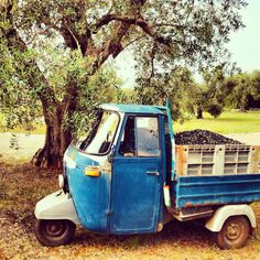 Destination: #oilmill.  #OlioSalve #olio #extravergine #madeinItaly #food #oil #olive #nature #Italy