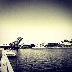 Dealchicken Tampa - Riverwalk in Downtown Tampa