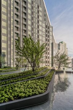 Project type: ResidentialArchtects: A49 Architects Ltd. / TROP Landscape Ltd.Client: VisavapatLocation: 788 Rama 4 Si Phraya, Bang Rak, Bangkok 10500Project Year: 2016 Photographs: Poompat Waratkiachthana