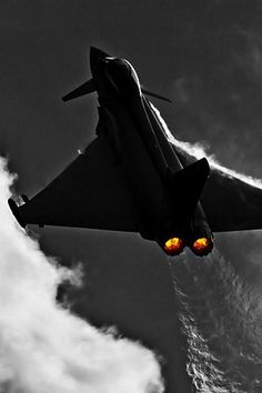The future of the RAF, the Eurofighter, since renamed to Typhoon, is a truly…