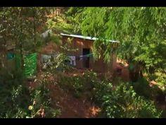 La experiencia del proyecto piloto de agricultura urbana y periurbana en...
