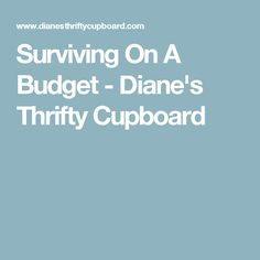 Surviving On A Budget - Diane's Thrifty Cupboard