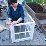 small greenhouse made from old windows! small greenhouse made from old windows! Window Greenhouse, Small Greenhouse, Greenhouse Plans, Miniature Greenhouse, Backyard Greenhouse, Pallet Greenhouse, Homemade Greenhouse, Backyard Landscaping, Old Windows