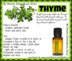 Be Shore's ABCs of essential oils. T is for Thyme.  Join my group for more information about essential oils: www.facebook.com/groups/BeShoreEssentailOils