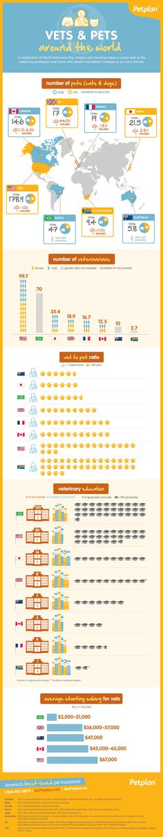 How do furry friends fare with vet care around the globe? Check out this Vets and Pets Around The World #infographic to find out!