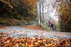 /by Patitucci #falls #cycling