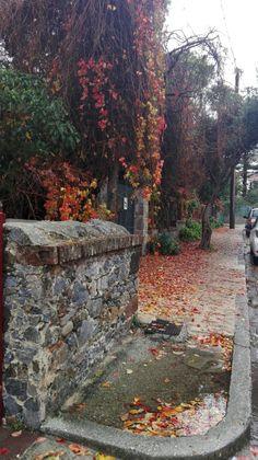 mjt , mytilene. autumn. greece