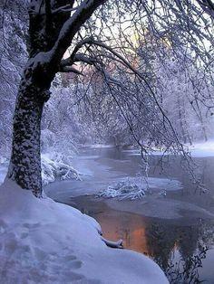 Landscaping Las Vegas, Front Yard Landscaping, Snow Scenes, Winter Scenes, Snow Forest, Winter Beauty, Winter Time, Beautiful Landscapes, Beautiful Places