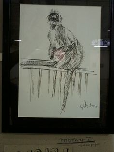 Live sketch of a Langoor