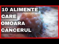 Cancerul moare daca mananci aceste 10 alimente ! | Arborele vietii - YouTube Youtube, Cancer, Medical, Diet, Medicine, Med School, Youtubers, Youtube Movies, Active Ingredient