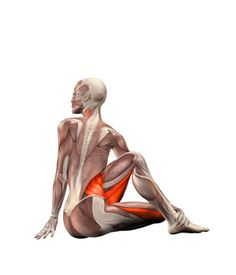 Yoga Exercises and Workouts: Sitting left twist | YOGA.com