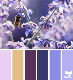 Design Seeds Color Palette | Design Seeds®