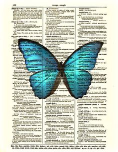Dictionary Art - Butterfly