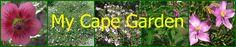 Wes-Kaap inheemse tuin