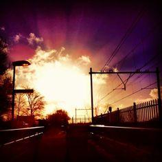 winter sun  by Saskia