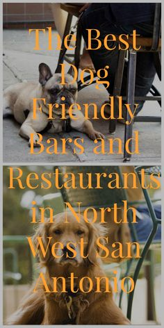 At MCLife we have an open pet policy which has no breed, size or weight restrictions. We understand that your pets are a big part of your life. So we want to connect you with the best dog friendly bars and restaurants in North West San Antonio near our property The Place at Overlook!